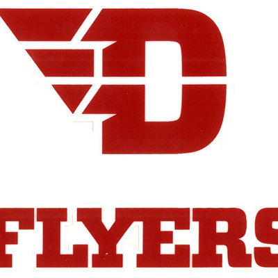CDI® D-Wing Flyers ColorShock Decal